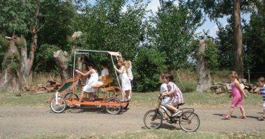 Carros-a-pedal