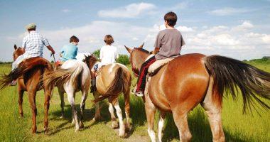 paseos-a-caballos-estancia